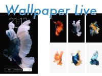 wallpaper-live