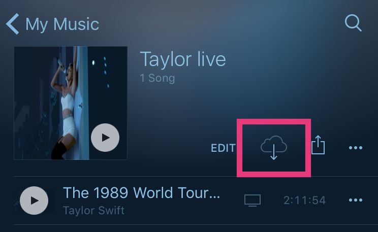 taylor-swift-1989-world-tour-live_2