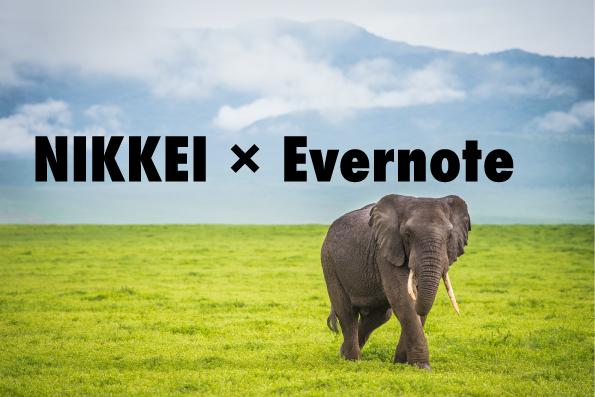 male-african-elephant-walking-alone-in-african-plain-000088196827_medium