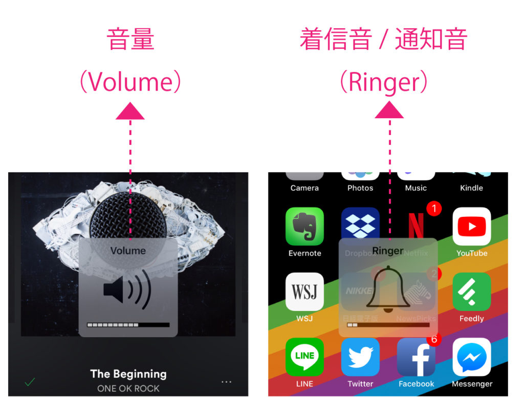 iphone-ipad-ios-device-volume-ringer-setting-2