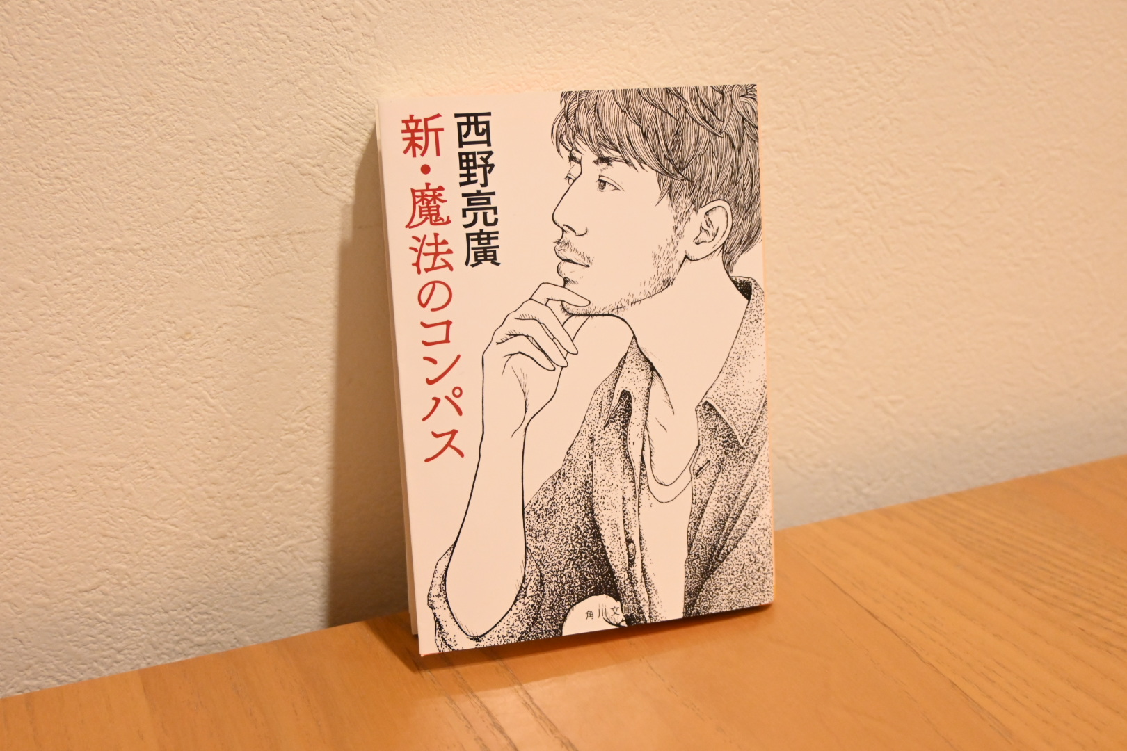 Nishino-akihiro-shin-mahouno-compass-book-review-1