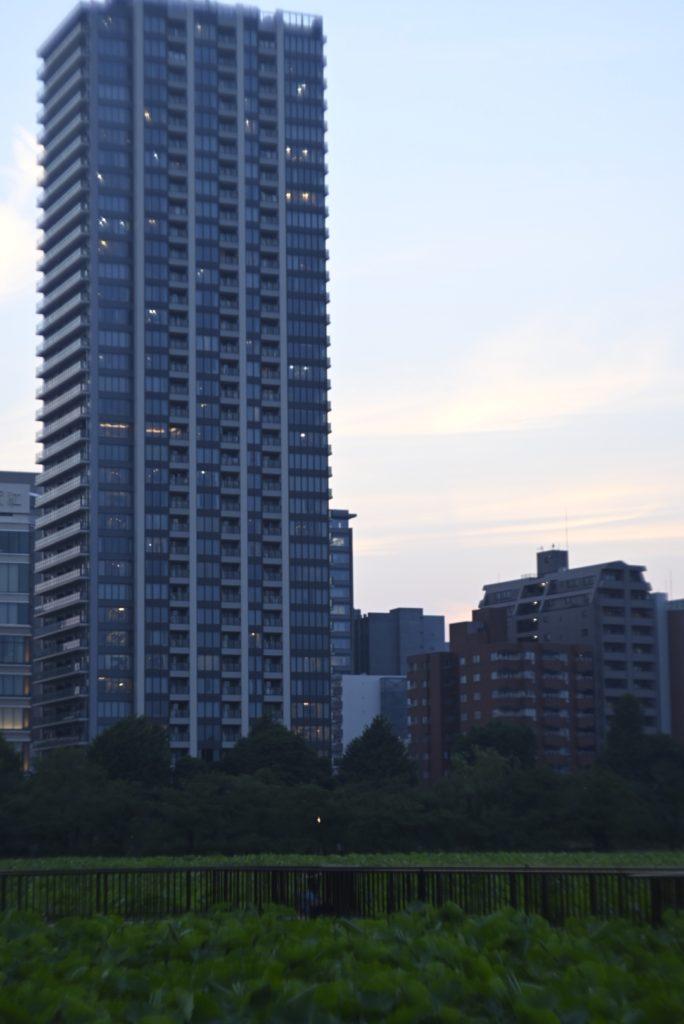 高いビルとかを見ると,縦の構図で撮りたくなる.うまく撮れるように,縦構図を学ぼう…