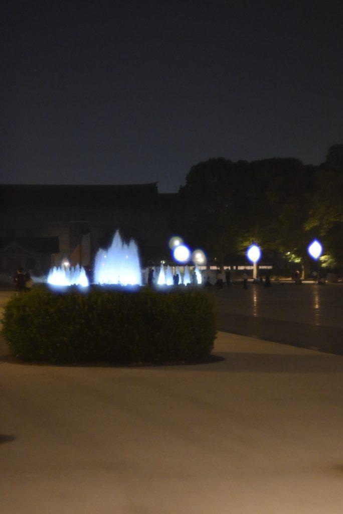 恩賜公園の大噴水.ライトアップされていて綺麗.