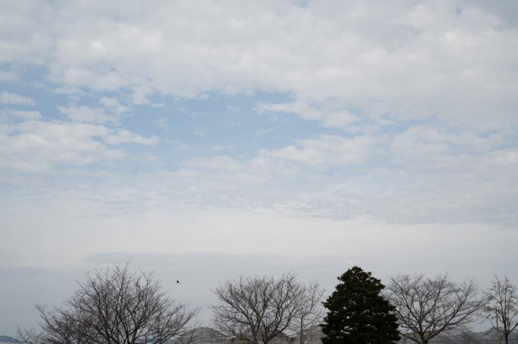 曇りの日に撮影したコントラストの弱い写真は,「ねむい」と感じやすい.